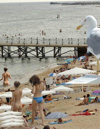 Скици-от-плажа-94-www