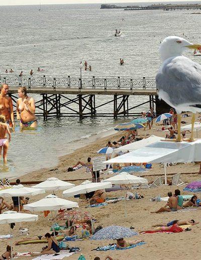 Скици-от-плажа-95-www
