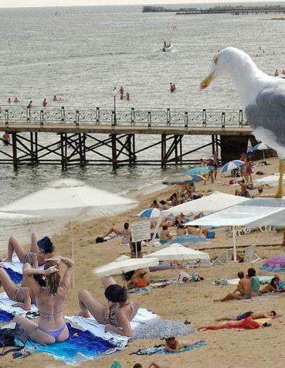 Скици-от-плажа-96-www
