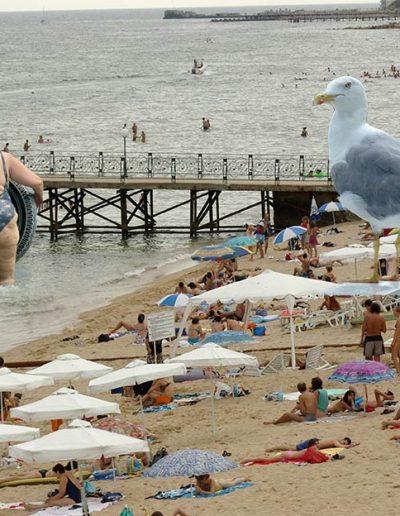 Скици-от-плажа-98-www