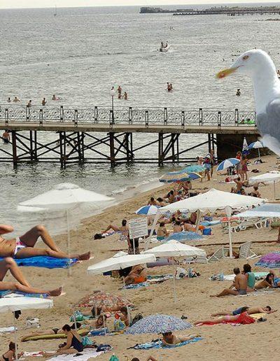 Скици-от-плажа-99-www